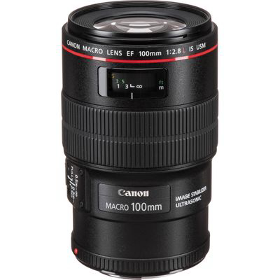 Canon  |  Ef 100mm F/2.8l Macro Is Usm Lens