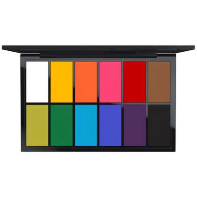MAC | Pro Palette Paintstick X 12