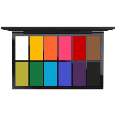 Pro Palette Paintstick X 12